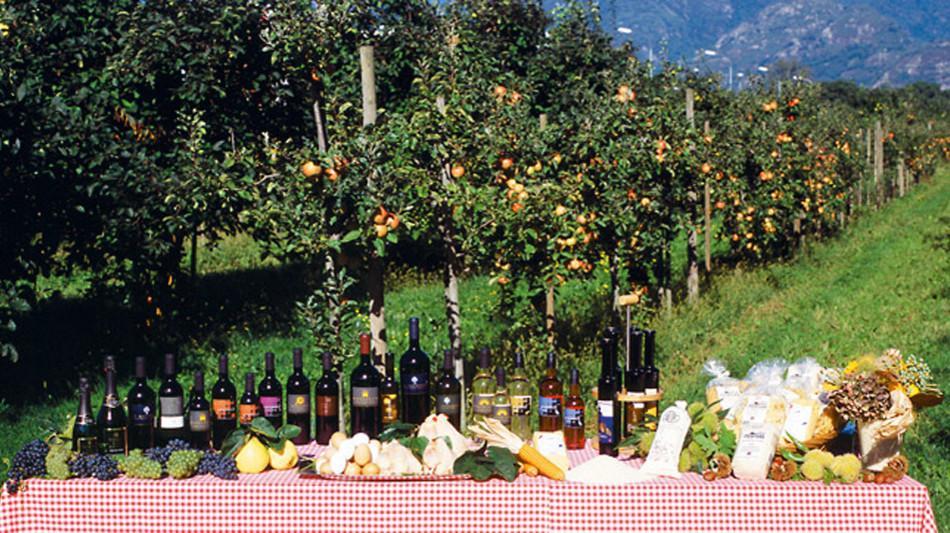 ascona-terreni-alla-maggia-prodotti-472.jpg