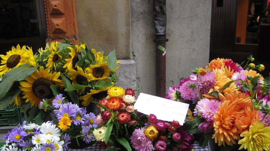bellinzona-mercato-di-bellinzona-fiori-345-0.jpg