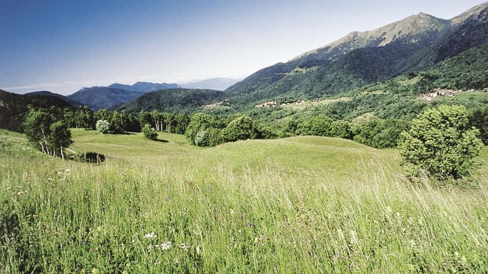 cademario-alpe-agra-stagno-agra-632-0.jpg