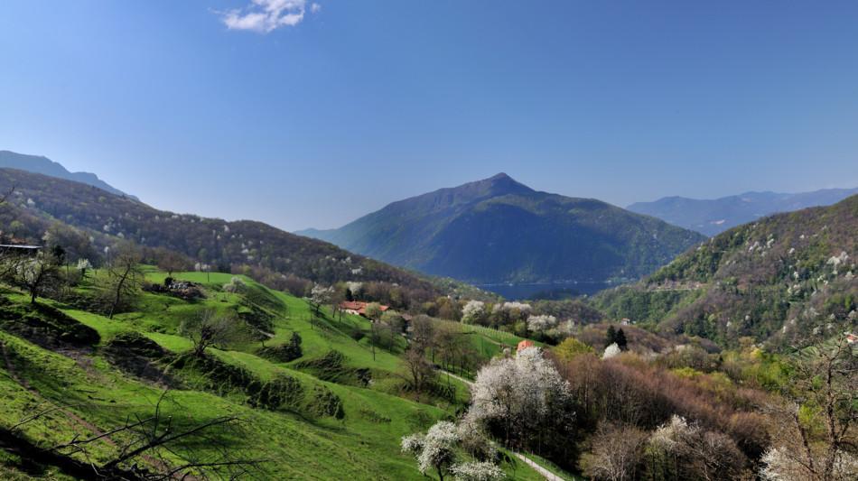 monte-san-giorgio-766-0.jpg