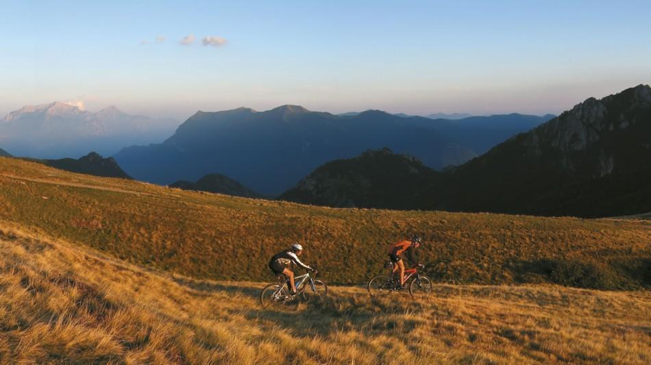mountain-bike-969-0.jpg