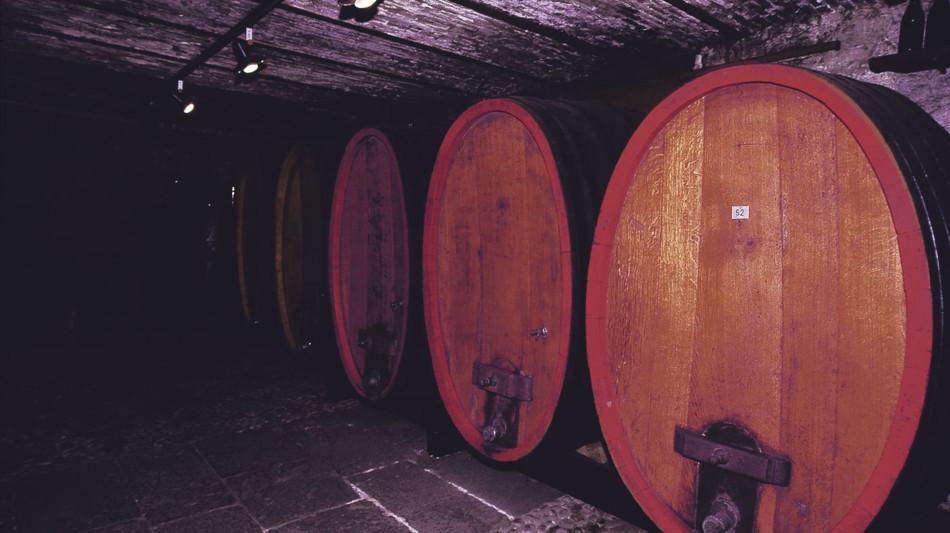 tenero-contra-museo-del-vino-matasci-877-0.jpg