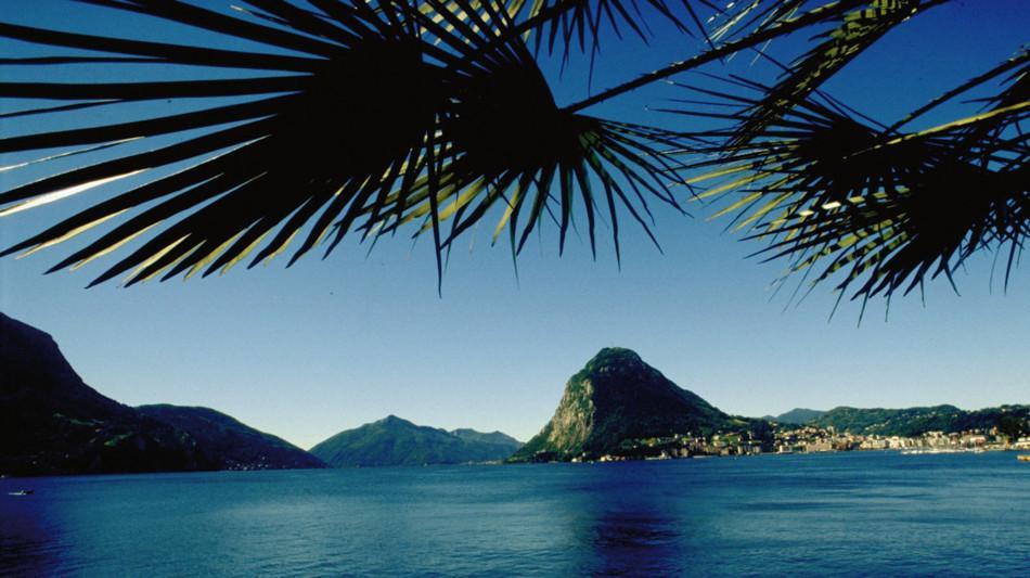 lugano-palme-lago-di-lugano-1242-0.jpg