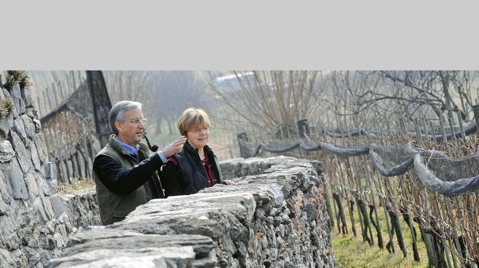 vitivinicola-san-matteo-cagiallo-1177-0.jpg