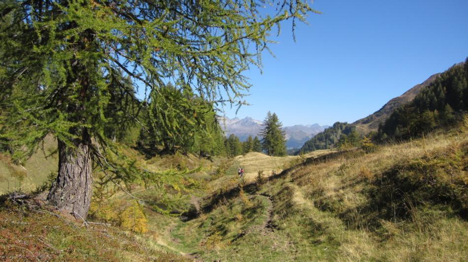 alpi-bedretto-paesaggio-1325-0.jpg