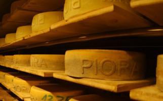 formaggio-dop-714-0.jpg