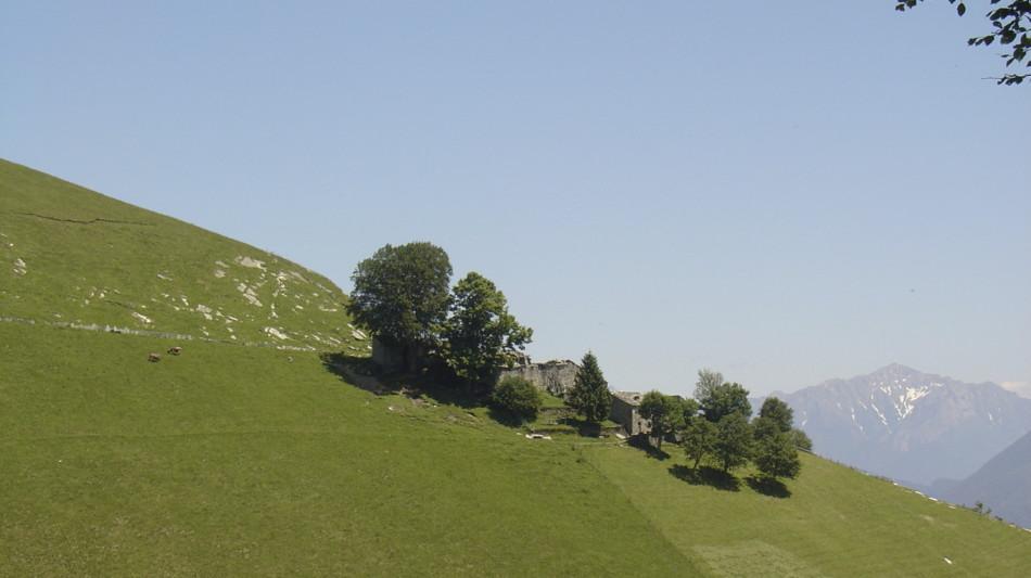 monte-generoso-itinerario-nevere-1687-0.jpg