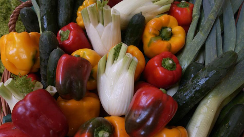 verdura-1877-0.jpg