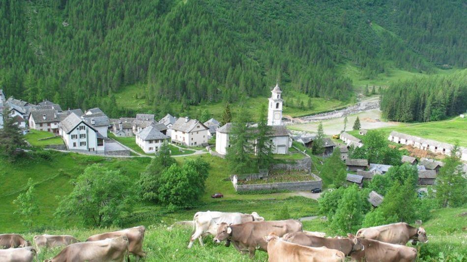 bosco-gurin-dorf-maggiatal-2349-0.jpg