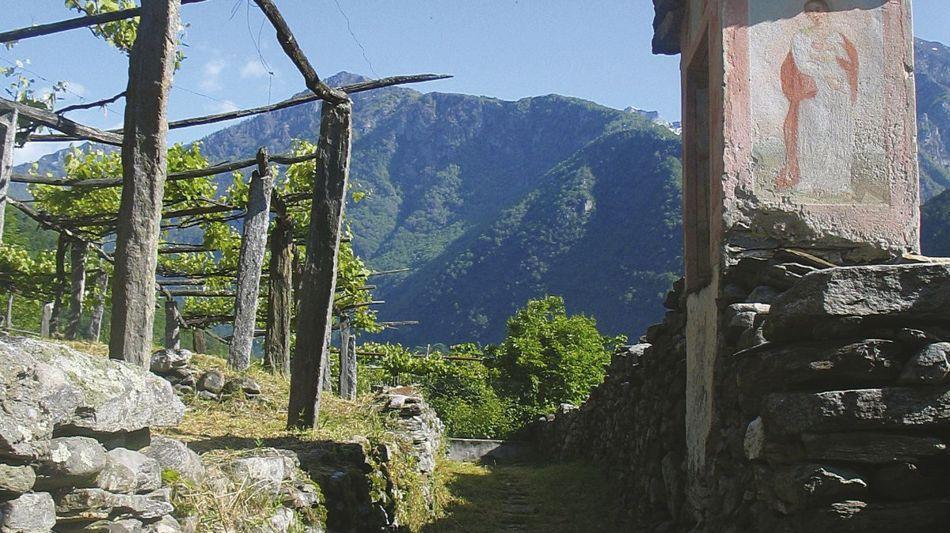 lodano-2360-1.jpg