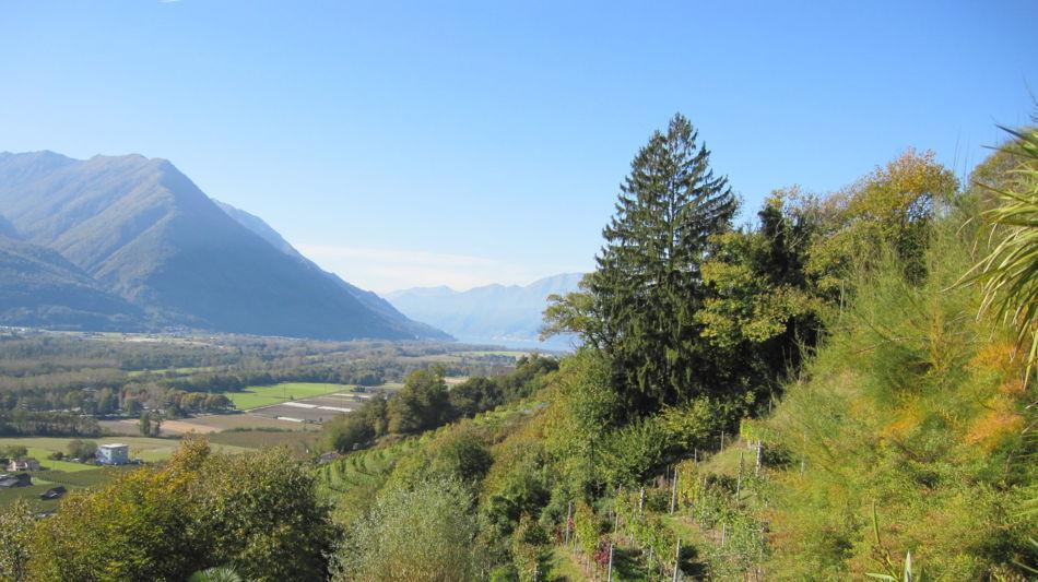 gudo-weinberg-wanderweg-2565-1.jpg