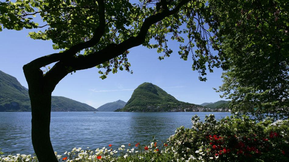 monte-san-salvatore-natura-3879-0.jpg
