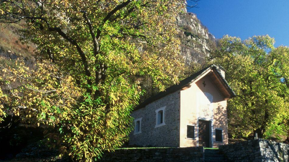 biasca-oratorio-santa-petronilla-4049-0.jpg
