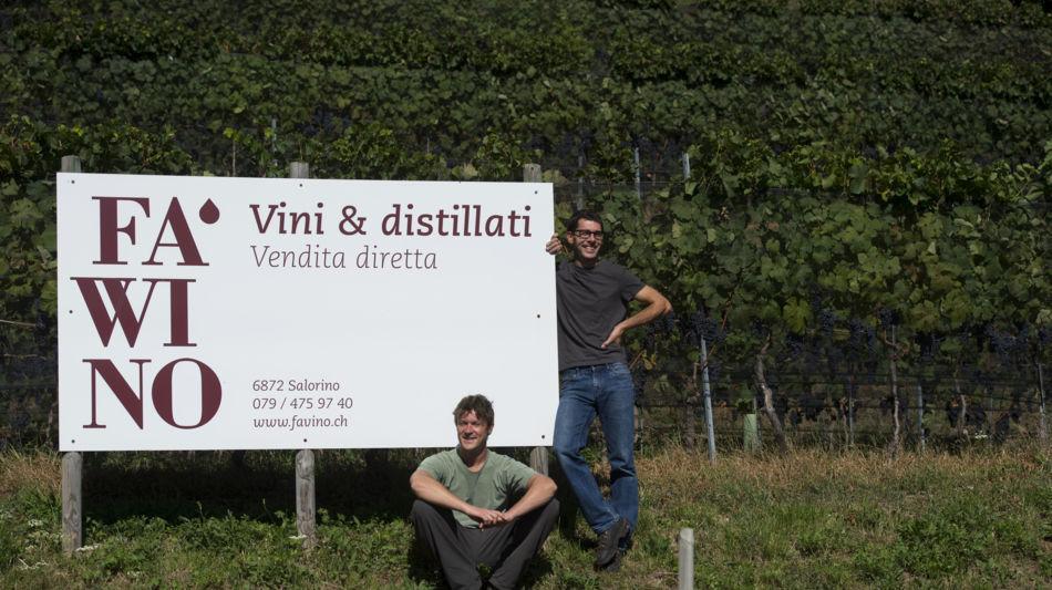 mendrisio-azienda-vitivinicola-fawino-4003-0.jpg