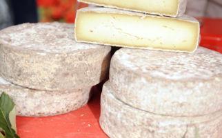 Bellinzona ist Käsehauptstadt