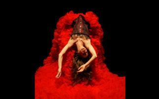Auch Blutsauger lieben den Tanz