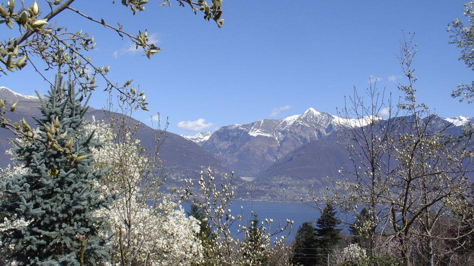 gambarogno-parco-botanico-del-gambarog-333-0.jpg