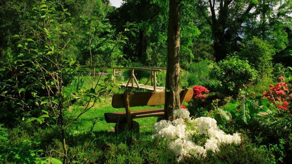 locarno-parco-delle-camelie-4766-0.jpg