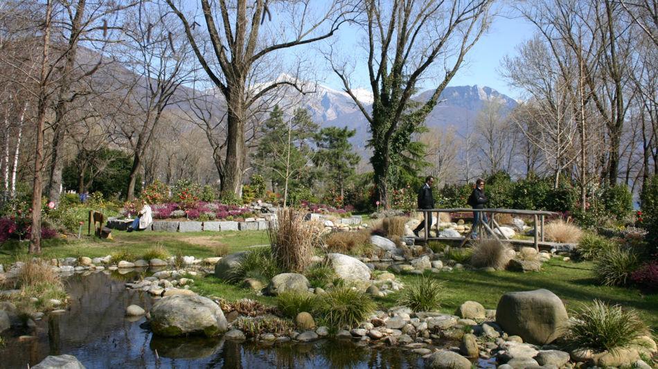 locarno-parco-delle-camelie-4767-0.jpg