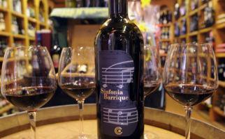 bellinzona-chiericati-vini-6527-1.jpg
