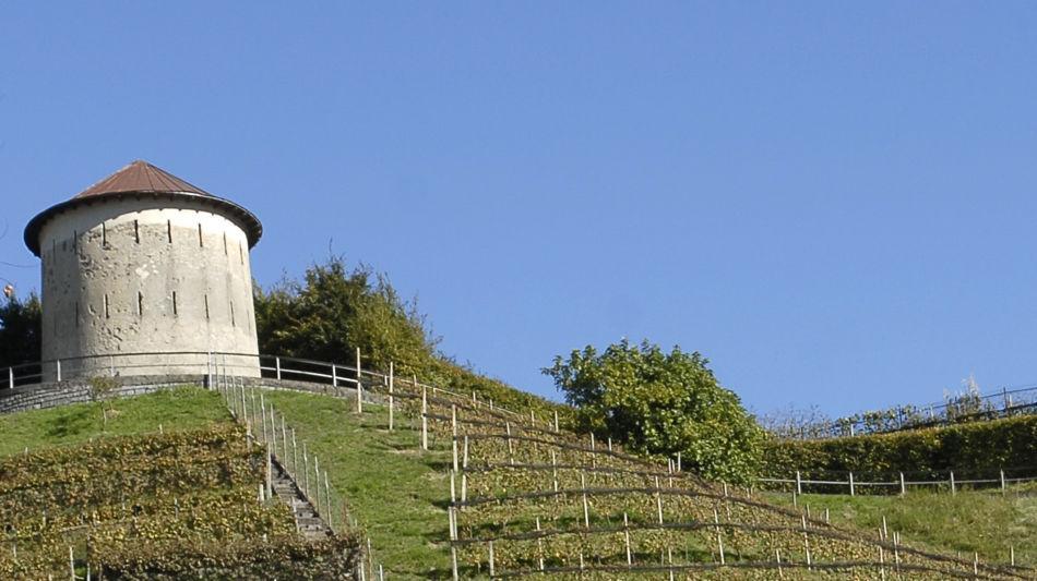 fortini-della-fame-6421-0.jpg