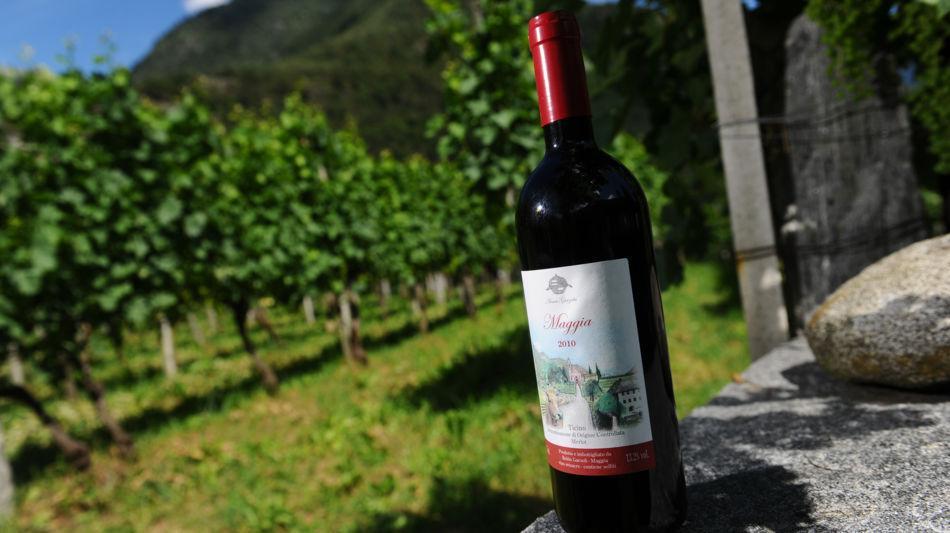 maggia-bottiglia-vino-rosso-maggia-201-2305-0.jpg