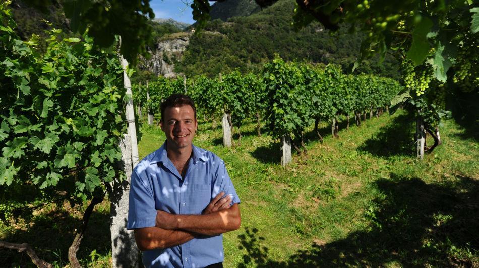 maggia-robin-garzoli-viticoltore-2306-0.jpg