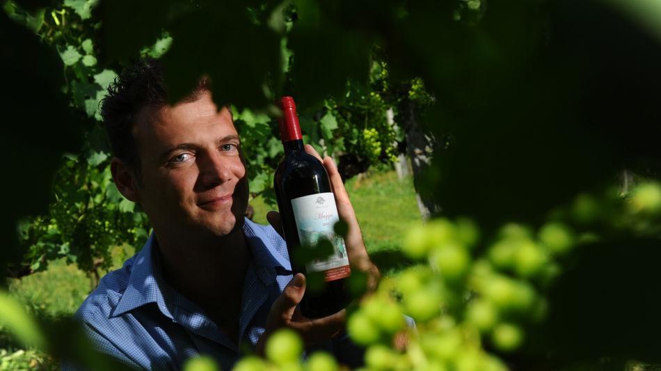 maggia-robin-garzoli-viticoltore-6256-0.jpg