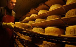 Die Geheimnisse der Käsereien