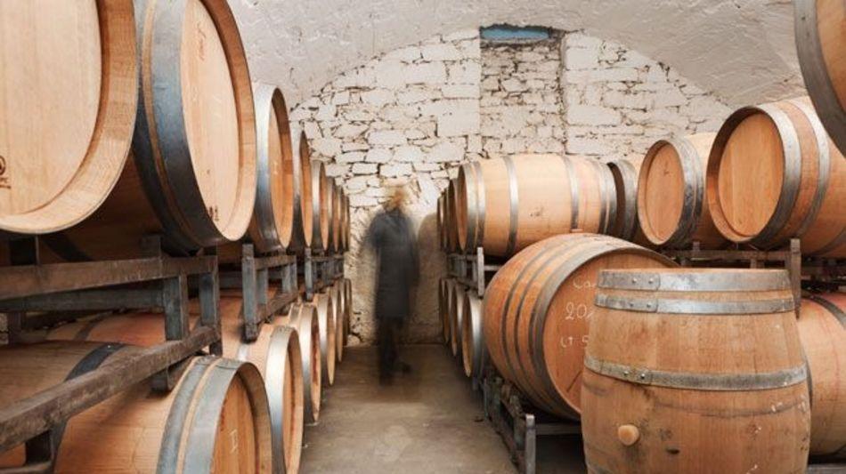 chiodi-ascona-vinicola-carlevaro-6508-1.jpg