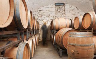 chiodi-ascona-vinicola-carlevaro-6583-1.jpg