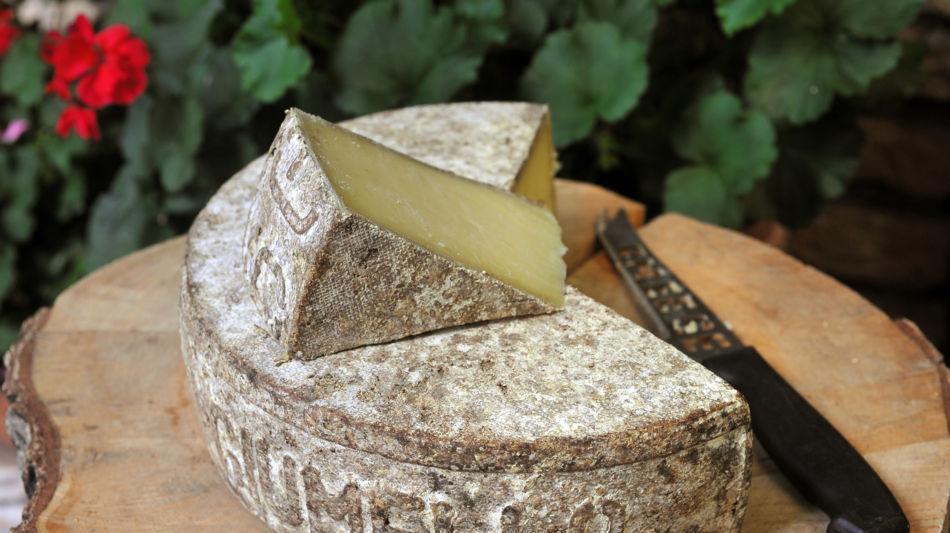 formaggio-dellalpe-6892-0.jpg