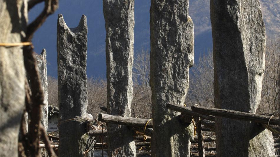 maggia-carasc-nei-vigneti-della-vallem-6865-0.jpg