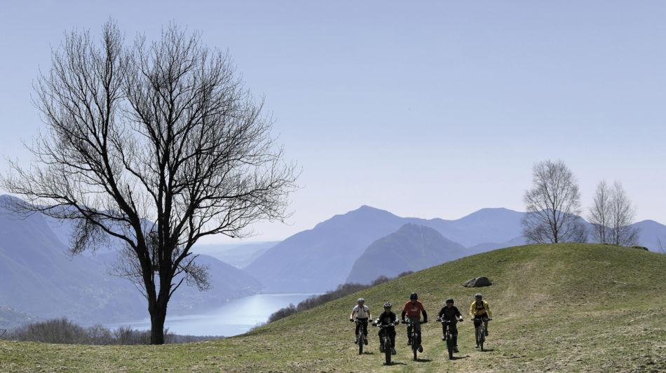 percorsi-mountain-bike-7239-0.jpg