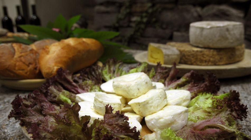 formaggini-su-piatto-insalata-7764-0.jpg