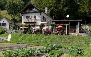 locarno-capanna-alla-fattoria-cardada-6953-0.jpg