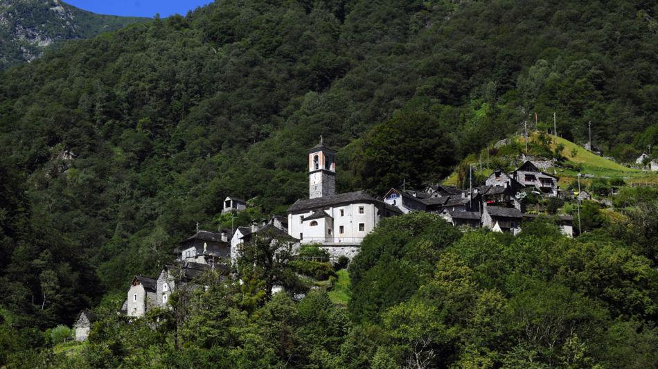 corippo-veduta-paese-e-bosco-7962-0.jpg