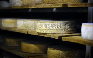 formaggio-dellalpe-vegorness-8081-0.jpg