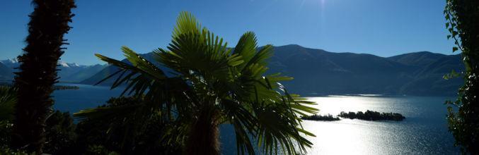 ronco-s-ascona-ronco-sascona-scorcio-s-8260-0.jpg
