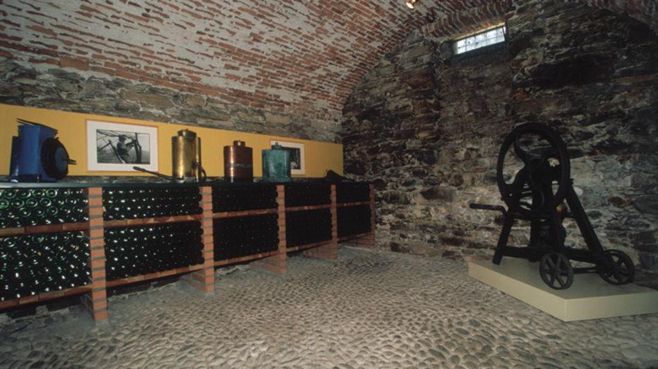 tenero-contra-museo-del-vino-matasci-8084-0.jpg