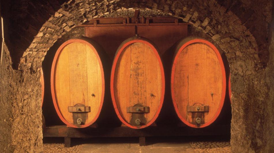 tenero-contra-museo-del-vino-matasci-8085-0.jpg