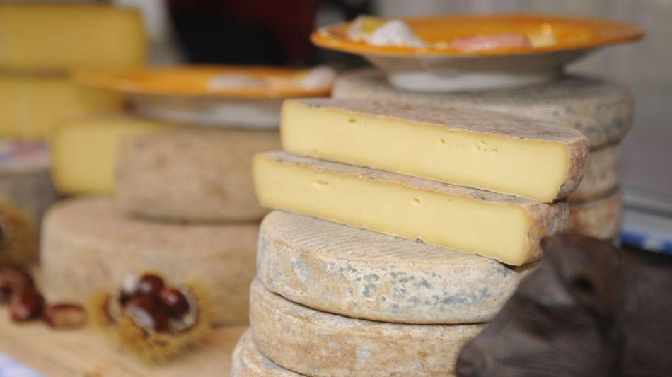 bellinzona-mercato-dei-formaggi-3991-0.jpg