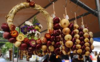 Zwiebelmarkt auf Luganos Piazza