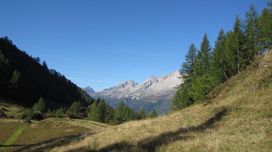 sentiero-degli-alpi-9240-0.jpg