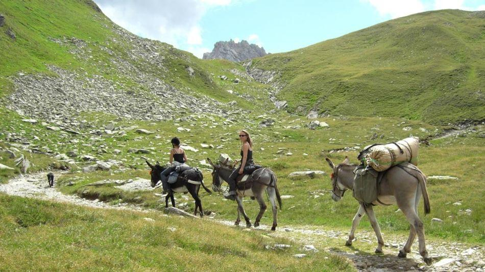 trekking-con-gli-asini-9222-0.jpg