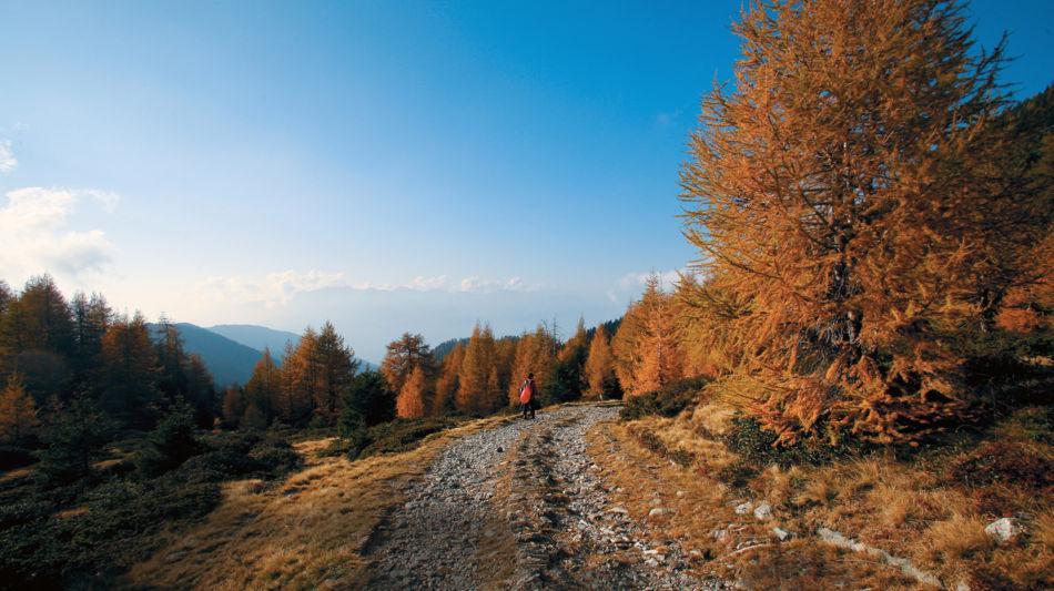 escursione-sul-gesero-9309-0.jpg
