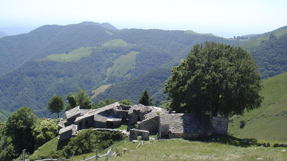 monte-generoso-itinerario-nevere-1686-0.jpg