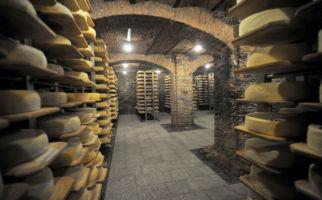 Offene Käsereien im ganzen Tessin