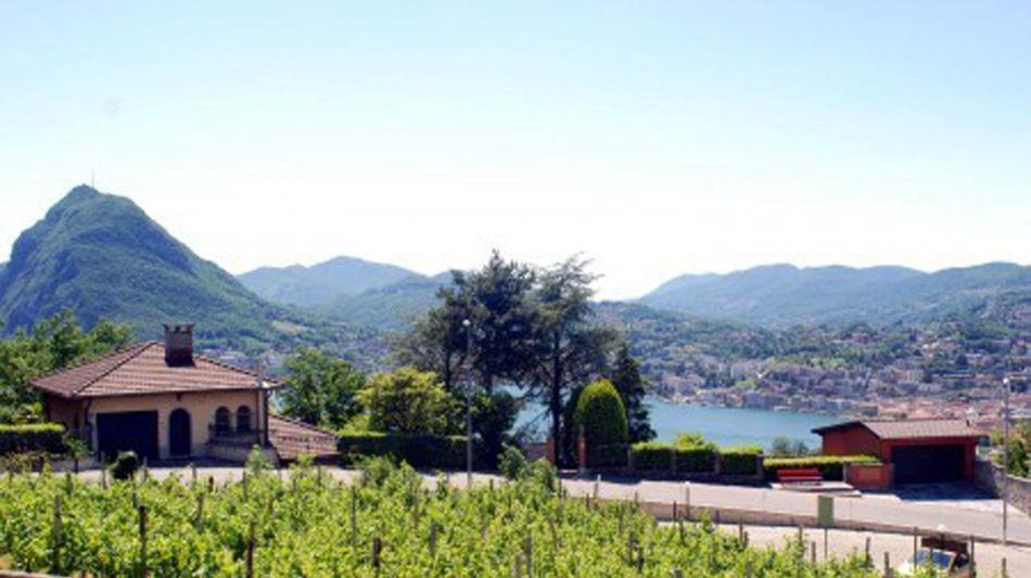 grotto-piccolo-vigneto-viganello-1397-0.jpg