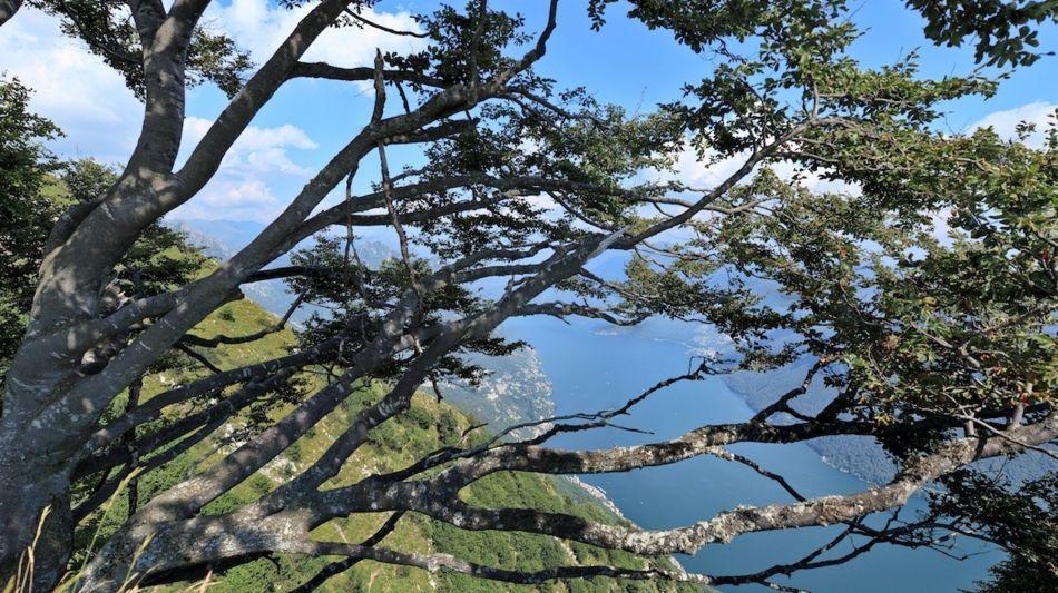 lugano-trekking-1142-3.jpg